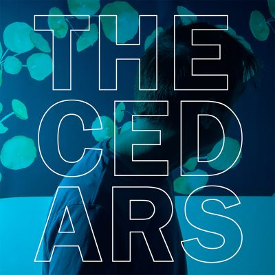 Preorder The Cedars!